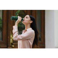 Drink bottle  Flask Frost 500 ml