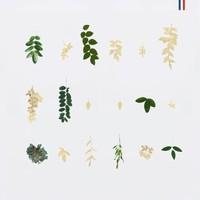 Christelle Christensen Bo Clou oorbel Eucalyptus 02
