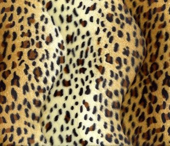 Velboa Panther-print Hellgold