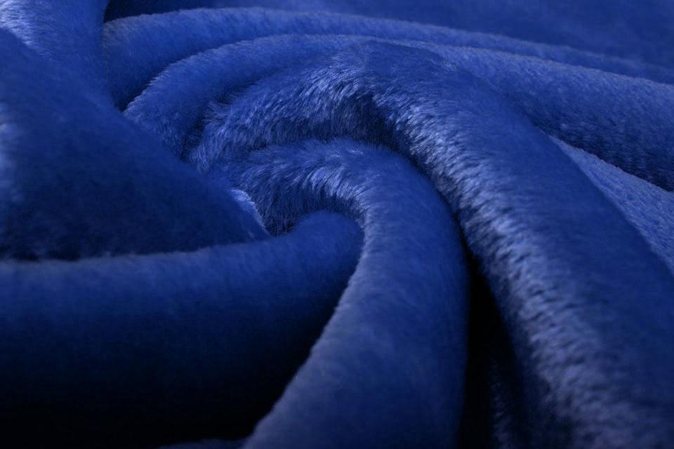 Kortharige Teddy Konings Blauw