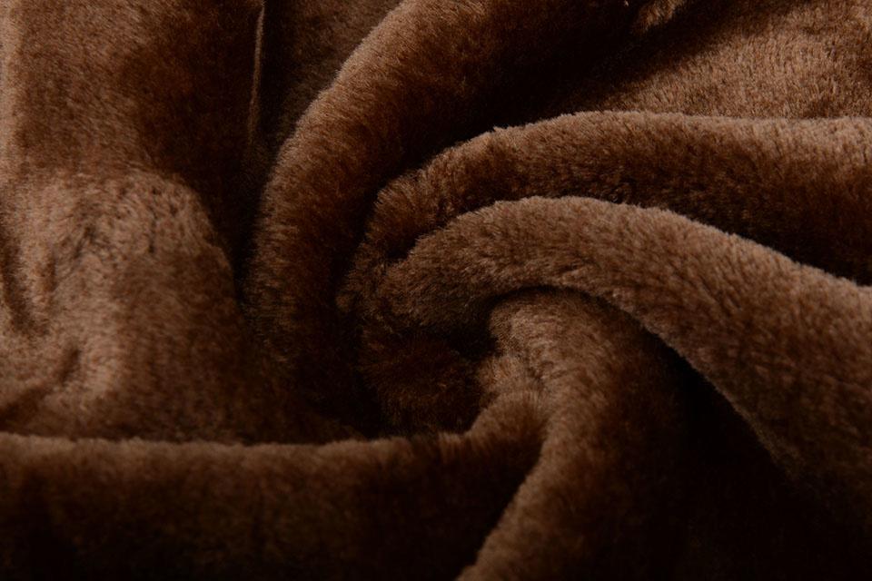 Kortharige Teddy Donker bruin