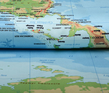 Digital Panel Stretch Cotton World Map Blue