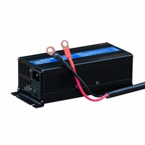 Rebelcell Acculader 12.6V20A