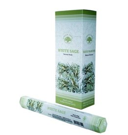 W.F. Peters Green Tree Witte Salie wierook hexa