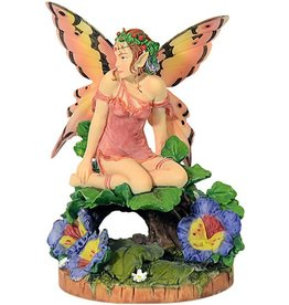 W.F. Peters Viola Pansy Fairy