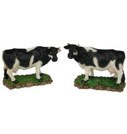 Koe (2 assortiment / prijs per 2 stuks)