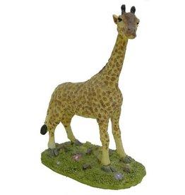 H.Originals Giraf 14 X 10 CM 1 assortiment