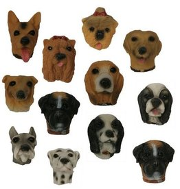 H.Originals Hond magneet 4 X 3 CM 12 assortiment