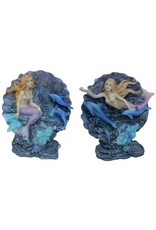 H.Originals Dolfijn schelp met zeemeermin 15 X  CM 2 assortiment
