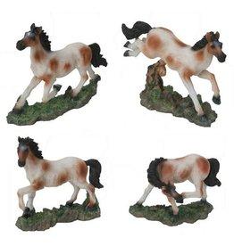 H.Originals Paarden 7 X 9 CM 6 assortiment