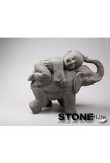 Stone-Lite BOEDDHA SHAOLIN OP OLIFANT 55X24X44 CM GRIJS