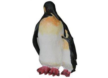 Pinguin beelden