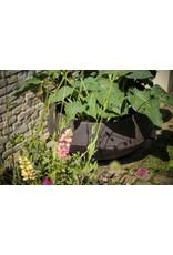 Domani Domani Atlantis Natural Plantenpot 60cm Diameter