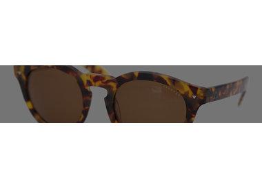 Ashbury-eyewear