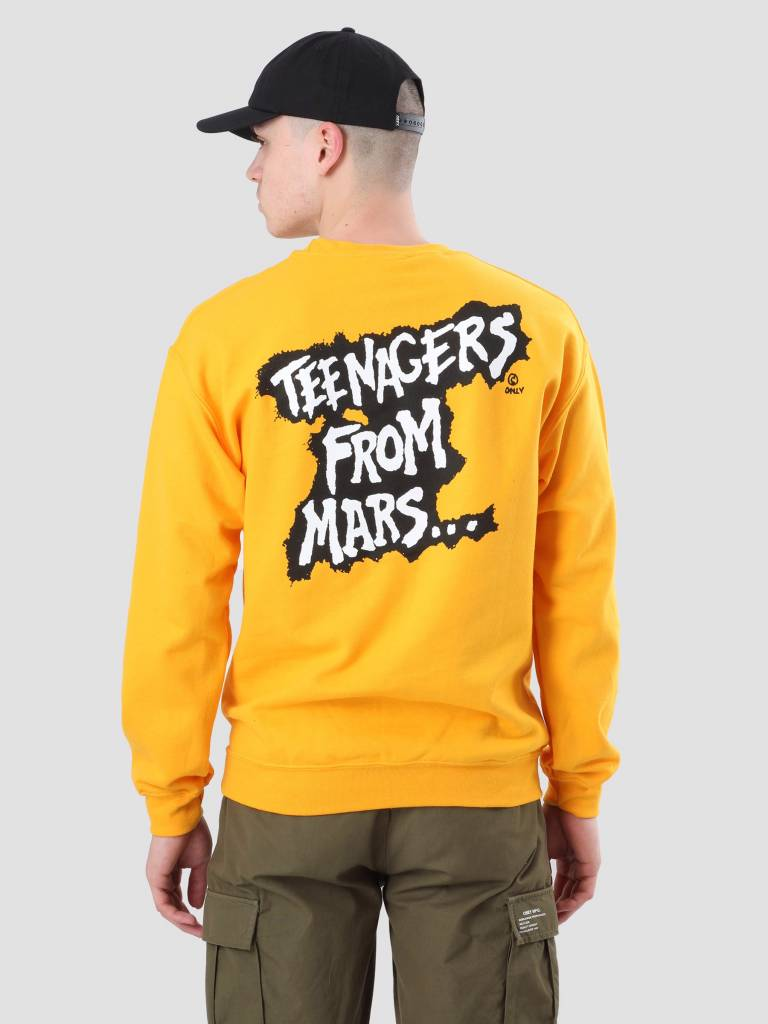 Obey Obey Misfits Teenagers From Mars Gold 114981769-GLD