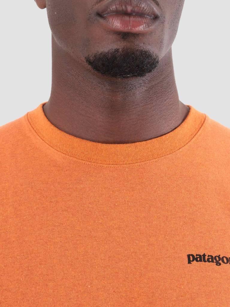 Patagonia Patagonia P-6 Logo Responsibili T-Shirt Marigold 39174