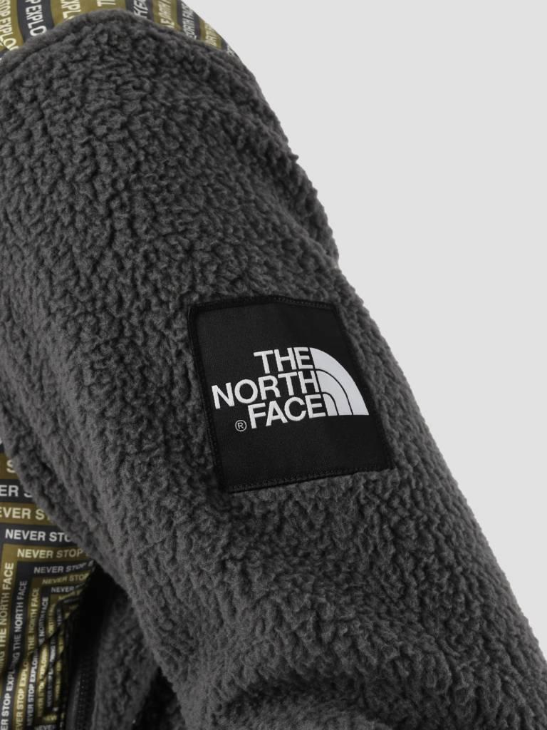 The North Face The North Face Denali Fleece Aspgylcdcapslpt