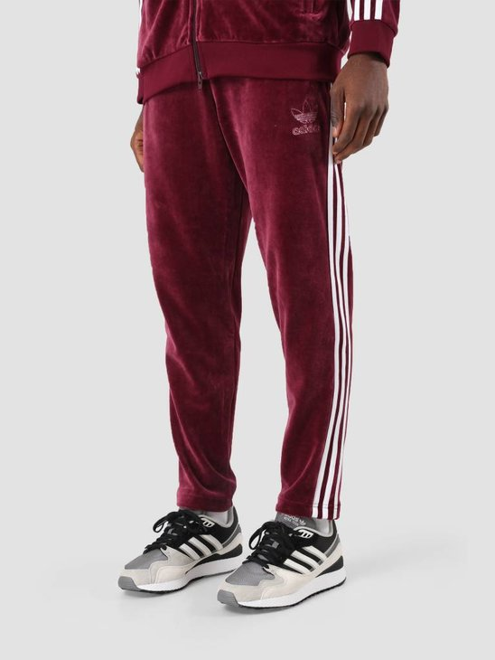 adidas Velour BB Trackpant Maroon DH5784