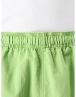 Stussy Stussy Stock Water Short Lime 113103
