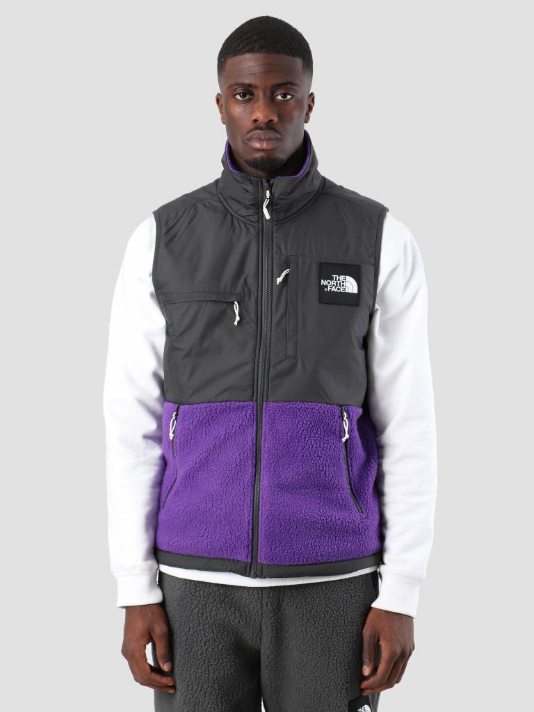The North Face The North Face Denali Fleece Vest Tllndspr Asphalt Grey