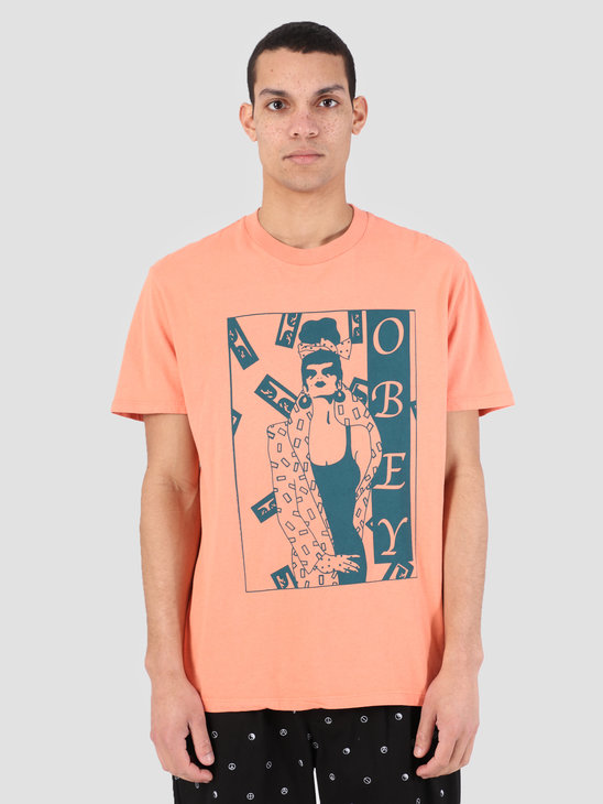 Obey Surrounded T-Shirt TER 166721903