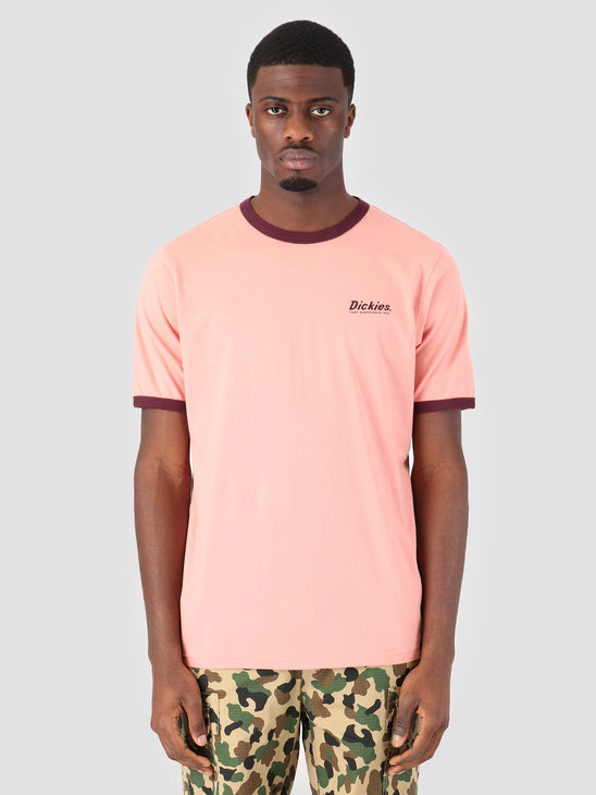 Dickies Barksdale T-Shirt Flamingo 06 210543-FLA