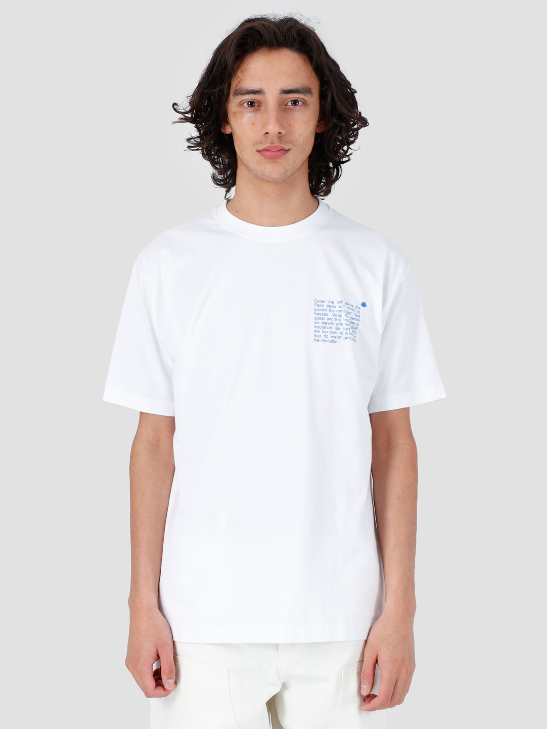New Amsterdam Surf association New Amsterdam Surf association Cold Palm T-Shirt White 2018001