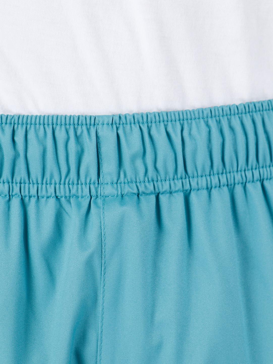 Stussy Stussy Alpine Pant Pant Mint 0406