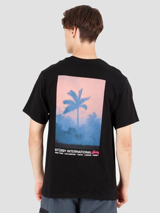 Stussy Fire Palm T-Shirt Black 1904428