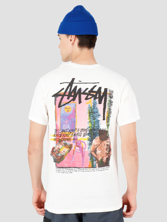 Stussy Daydream Pig. Dyed T-Shirt Natural 1904438