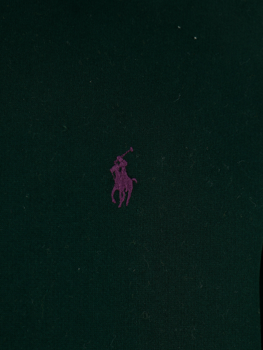 Polo Ralph Lauren Polo Ralph Lauren Lspohood M2 Longsleeve Knit Green 710766778012