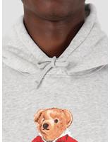Polo Ralph Lauren Polo Ralph Lauren Lspohoodm6 Longsleeve Knit Grey 710782860003