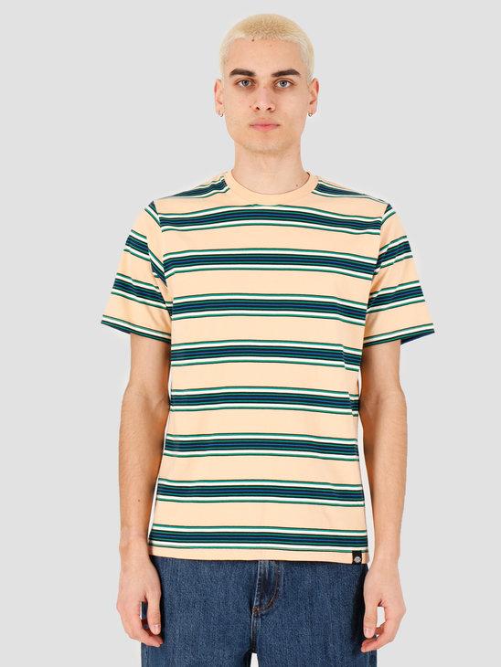 Dickies Lithia Springs T-Shirt Peach Brulee DK0A4TMQPEB1