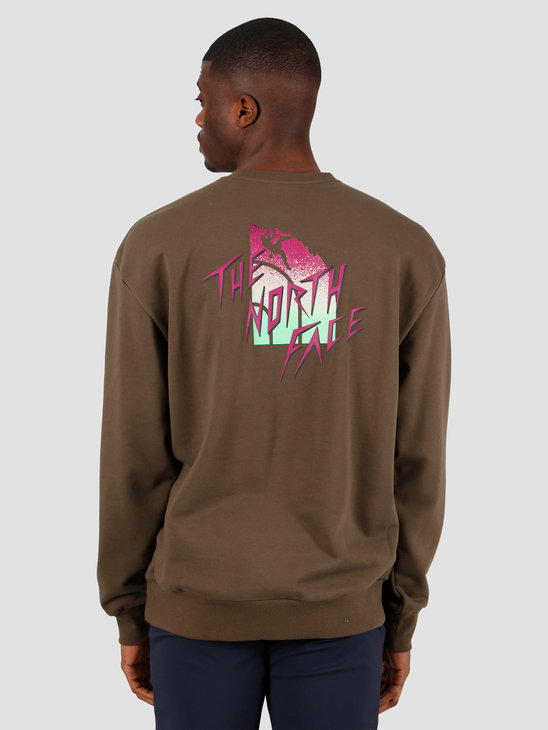 The North Face Masters Of Stone Crewneck New Taupe Green NF0A4C9J21L1