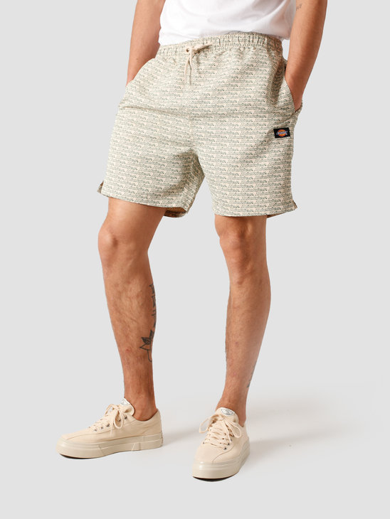 Dickies Cave Point Short Light Taupe DK0A4TLULTP1