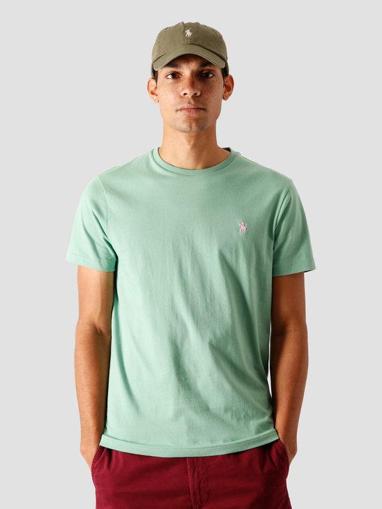 Polo Ralph Lauren 26-1 Jersey T-Shirt Pistachio-C3113 710671438193