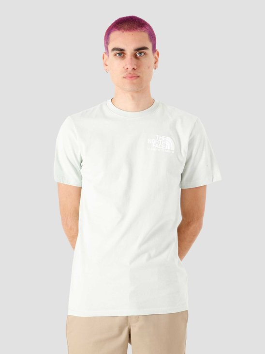 The North Face Coordinates T-Shirt Green Mist NF0A52Y8V39