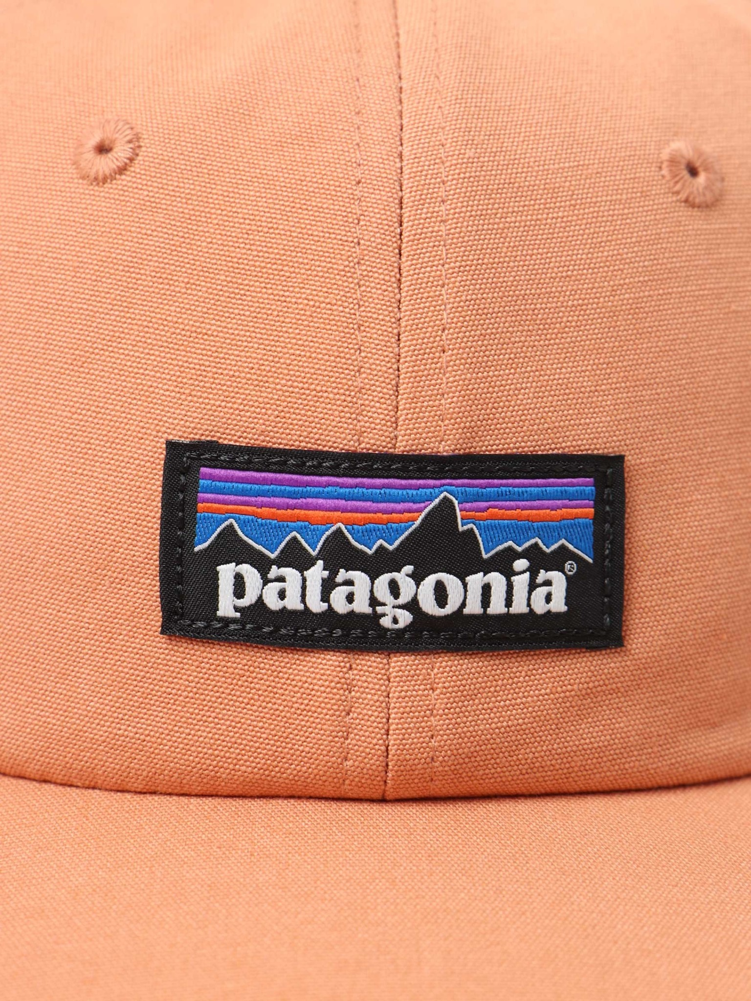 Patagonia Patagonia P-6 Label Trad Cap Toasted Peach 38296