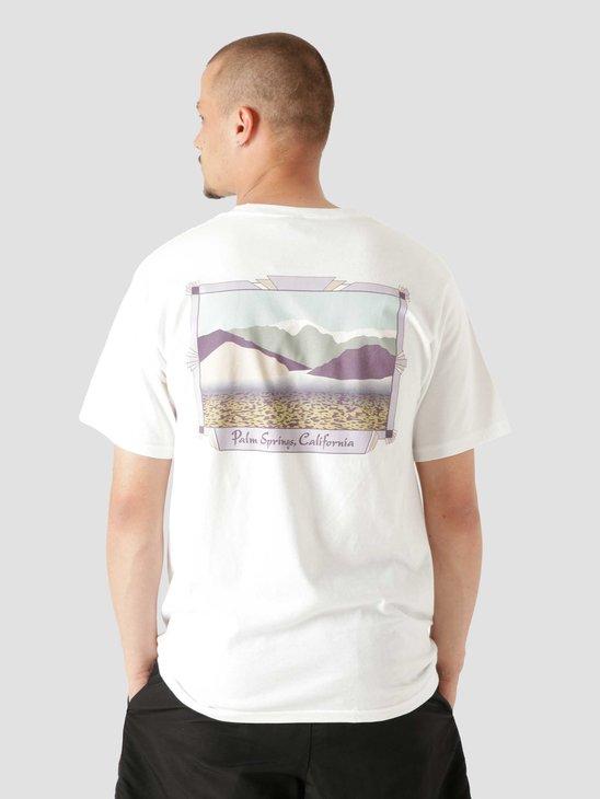 Stussy Palm Springs T-Shirt White 1904691