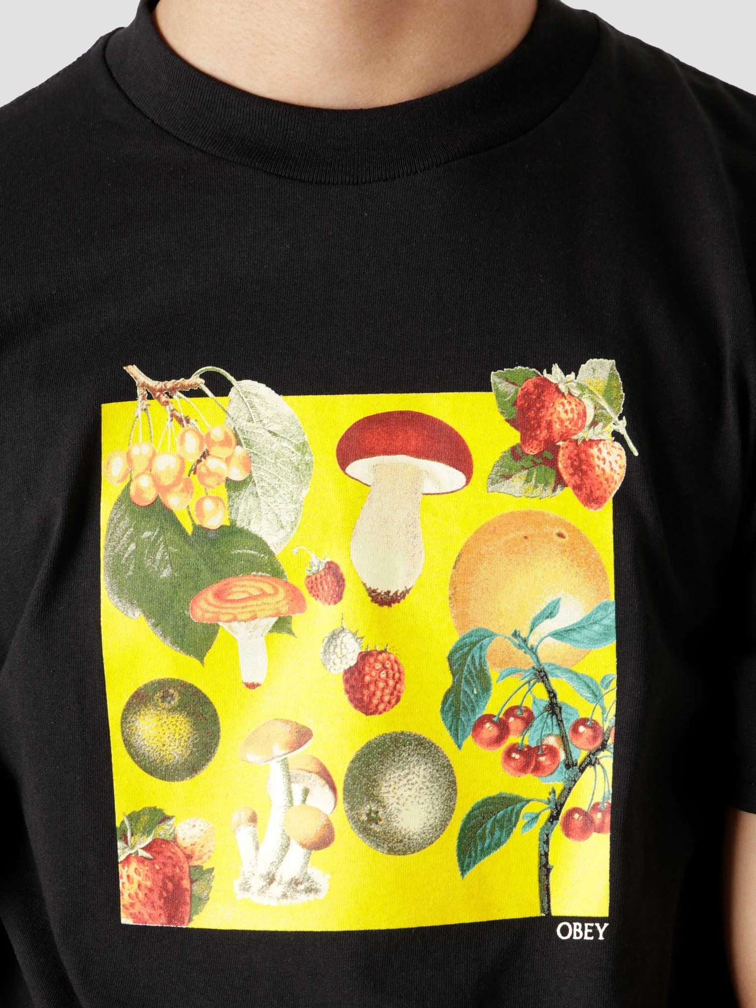 Obey Obey Fruits & Mushrooms Black 165262677