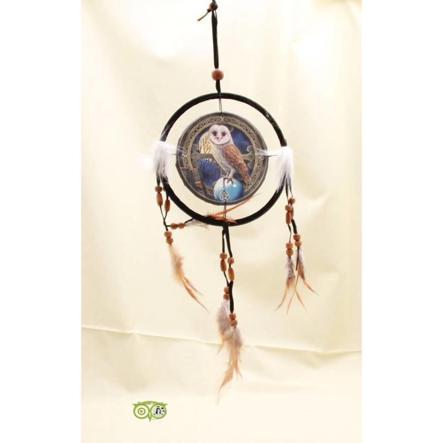 Dromenvanger 'Kerkuil' Lisa Parker 16 cm-1