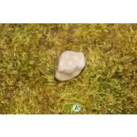 thumb-Oceaan Oogjes Jaspis OOJ-RM-5-18-1