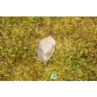thumb-Oceaan Oogjes Jaspis OOJ-RM-5-18-2