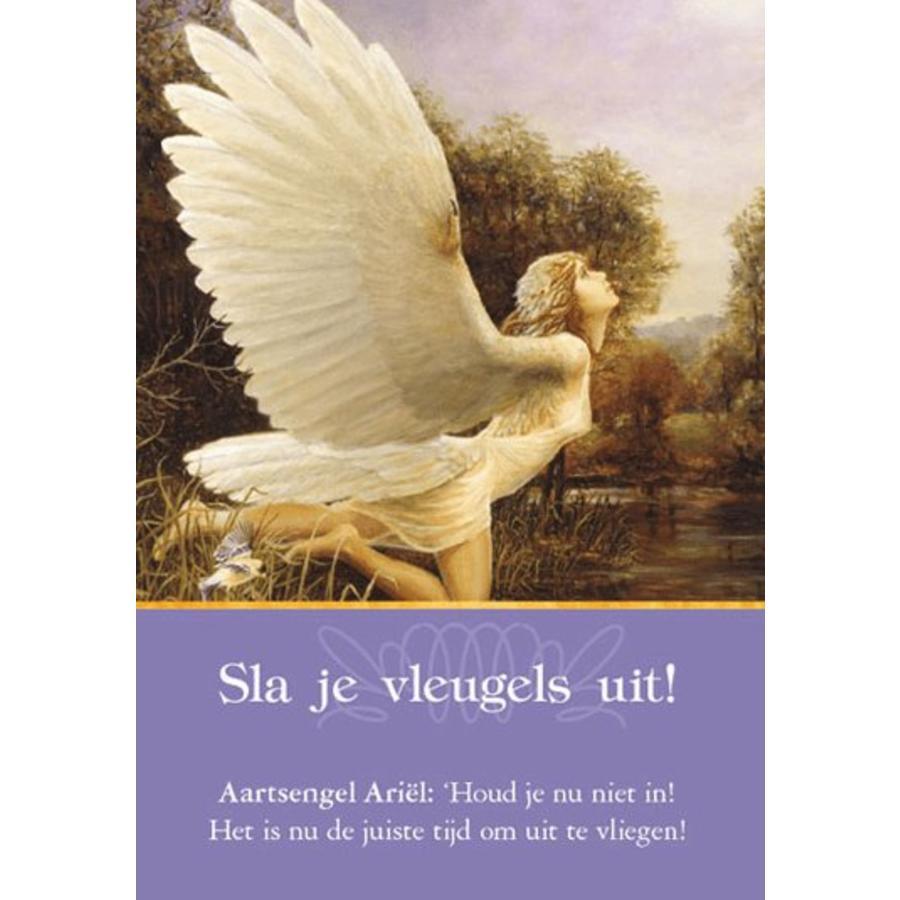 Aartsengelen Orakelkaarten  - Doreen Virtue-3