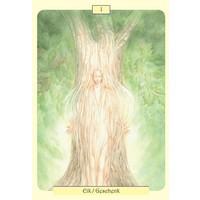 thumb-Dryaden, de boomgeesten met helende krachten - Tiziana Mattera-2