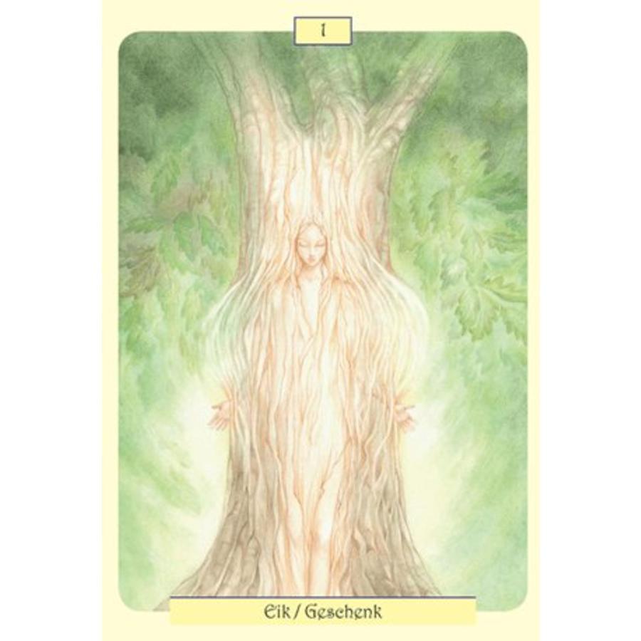 Dryaden, de boomgeesten met helende krachten - Tiziana Mattera-2