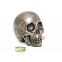 thumb-Pyriet schedel 461 gram-3