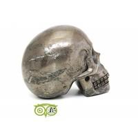 thumb-Pyriet schedel 461 gram-4