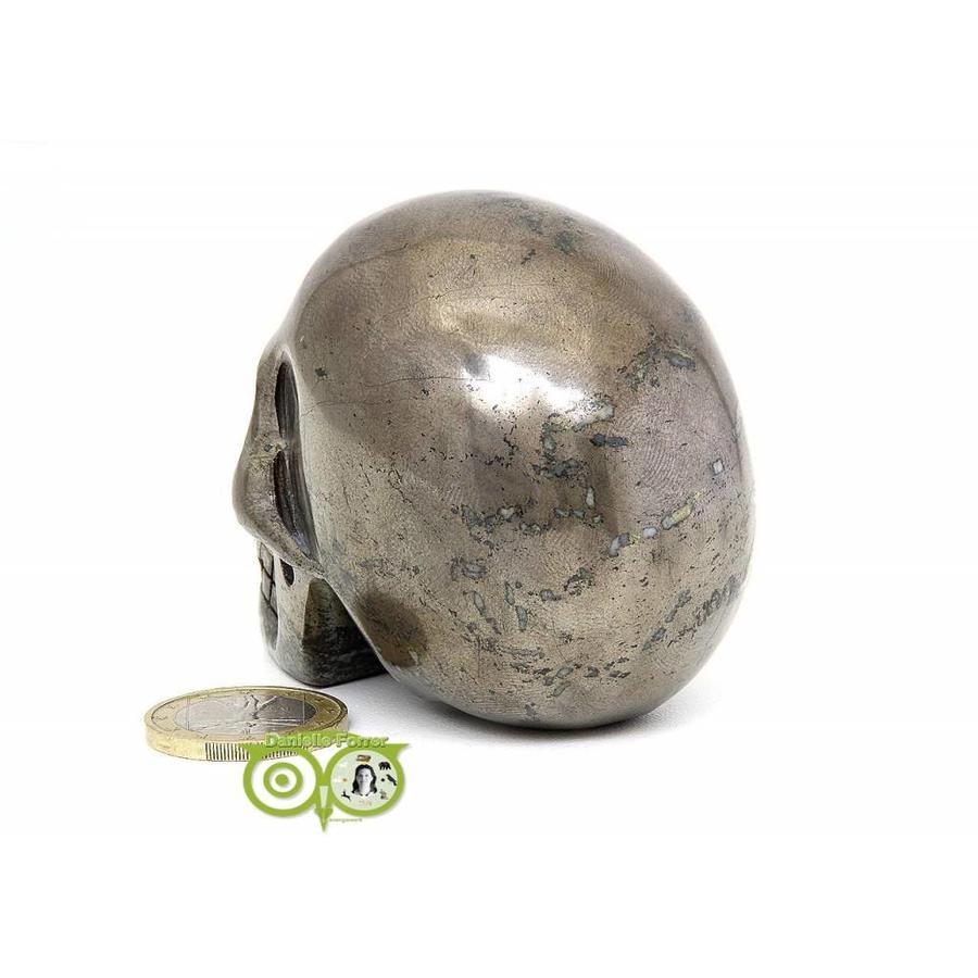 Pyriet schedel 461 gram-7