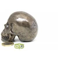 thumb-Pyriet schedel 461 gram-8